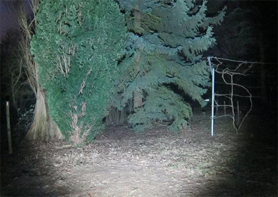 LED LENSER X21R im Einsatz bei Dunkelheit